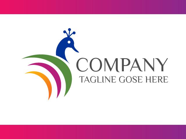 Peacock Colour Logo Design Vector