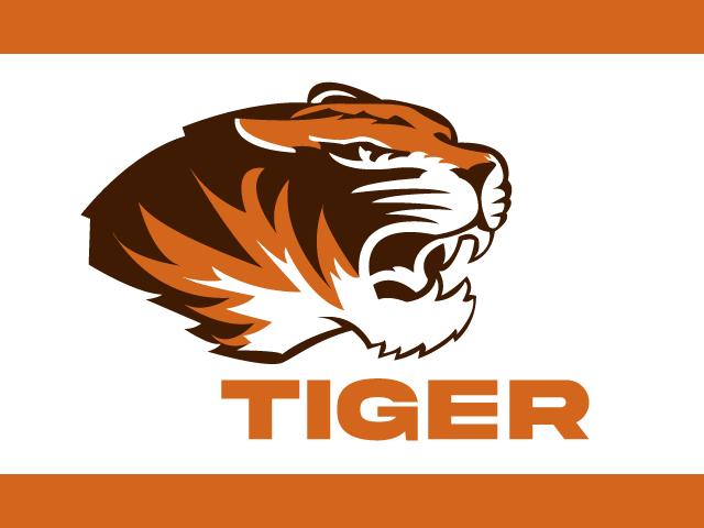Tiger Running Logo Design Vector